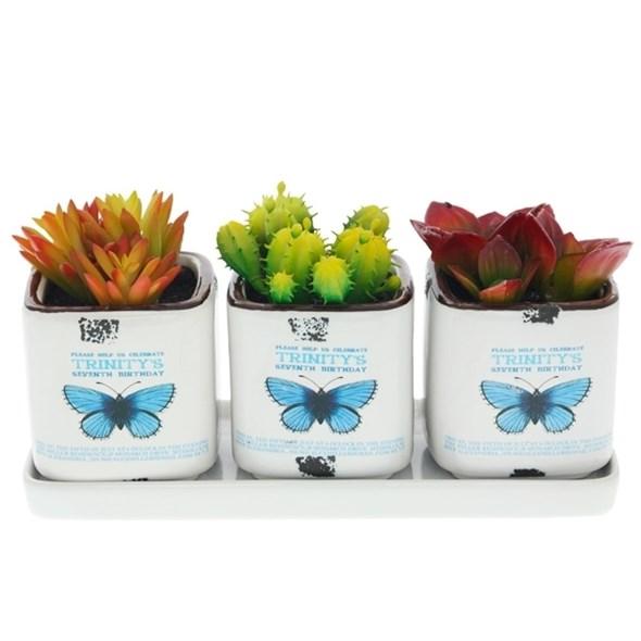 Набор из трех искусственных кактусов в кашпо на подставке - фото 9953
